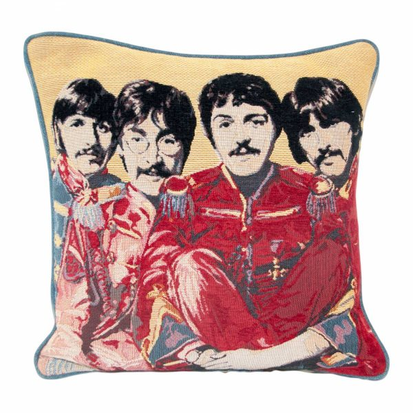 Coloured Beetles Cushion with plain back