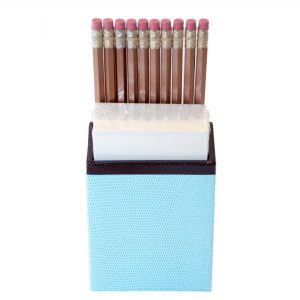 Faux Snakeskin Pencil & Paper Caddy