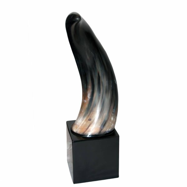 Large Black Horn on Black Plinth