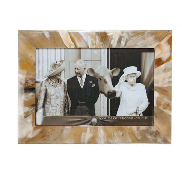 Handmade Horn and Teak Picture Frame 9x12