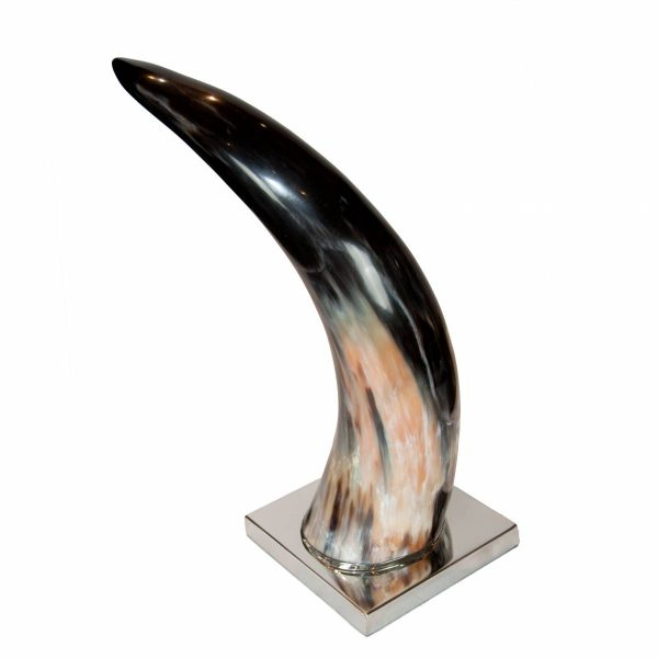 Large Horn on Metal Base