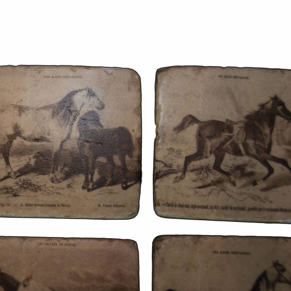 Set of Four 'Stone' Horse Picture Coasters