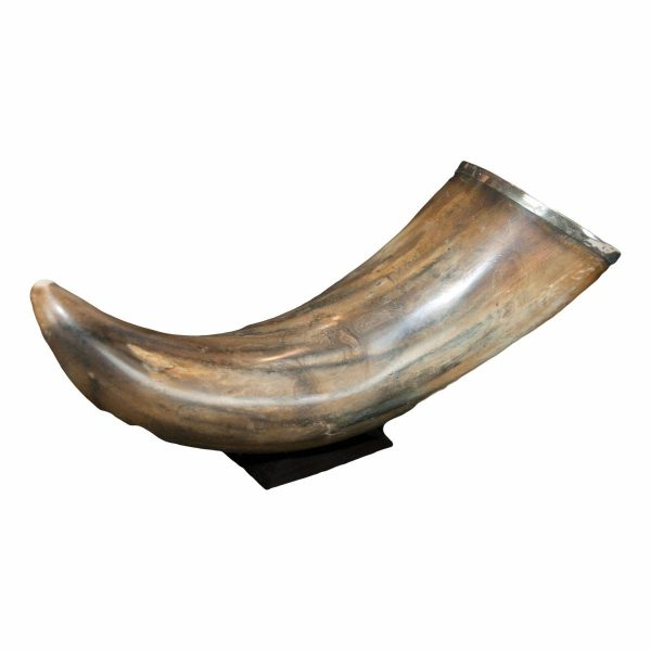 Tortoiseshell Horn with Silver Rim on Stand